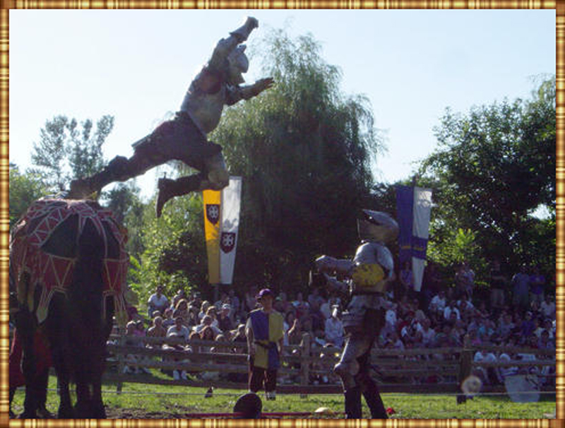Jousting Image 1 - Inspire Productions